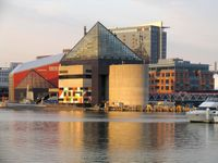National-aquarium-baltimore-mdbt10