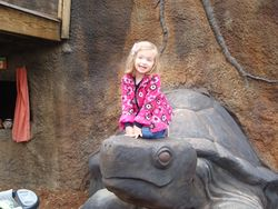 Niece Lilly telling you not to submit your application via a turtle.